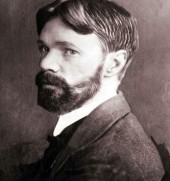 D.H. Lawrence Quote Picture