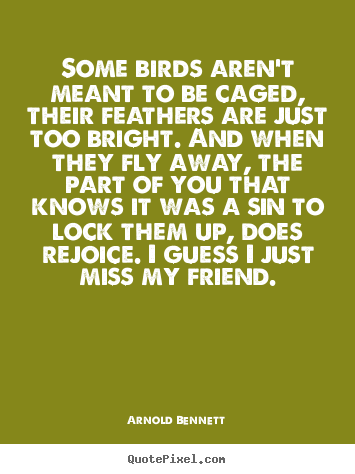 Diy picture quote about friendship - Some birds aren't meant to be caged, their..
