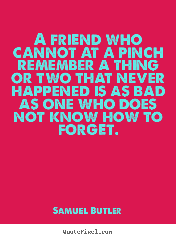 Samuel Butler picture quote - A friend who cannot at a pinch remember a thing or two that.. - Friendship quote