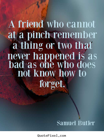 Friendship quotes - A friend who cannot at a pinch remember a thing or two..