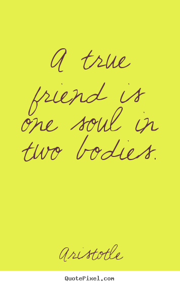 Quote about friendship - A true friend is one soul in two bodies.