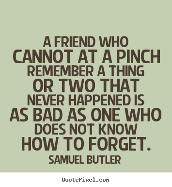 Samuel Butler picture quotes - A friend who cannot at a pinch remember a thing or two that never happened.. - Friendship quotes
