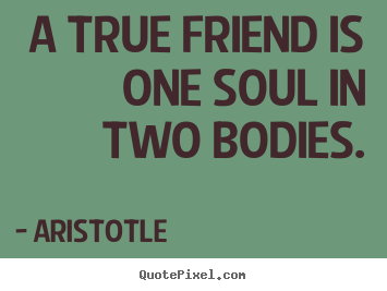 Quote To Friends About Friendship Unique Friendship Quotes  A True Friend Is One Soul In Two Bodies.