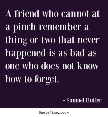 Quotes about friendship - A friend who cannot at a pinch remember a thing or..
