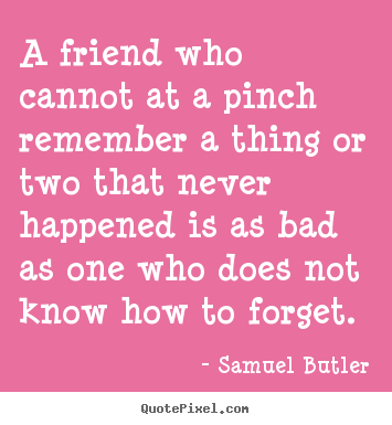 Friendship quotes - A friend who cannot at a pinch remember a thing or two that never happened..