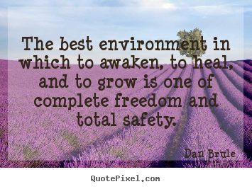 Dan Brule picture quotes - The best environment in which to awaken, to heal, and to grow.. - Inspirational quotes