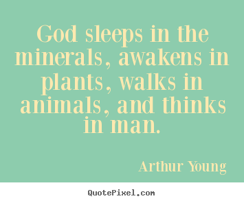 Inspirational quotes - God sleeps in the minerals, awakens in plants,..