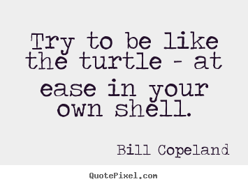 Try to be like the turtle - at ease in your own shell. Bill Copeland best inspirational quotes