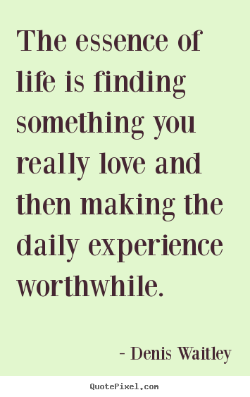 Denis Waitley picture quotes - The essence of life is finding something you.. - Life quotes