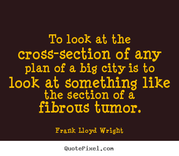 Frank Lloyd Wright picture quotes - To look at the cross-section of any plan.. - Life sayings