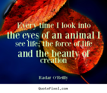 Every time i look into the eyes of an animal i see life; the force of.. Radar O'Reilly famous life quotes