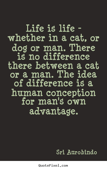 Life quote - Life is life - whether in a cat, or dog or man. there is no difference..