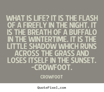 What is life? it is the flash of a firefly in the.. Crowfoot great life quote