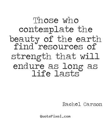 Life Quotes Those Who Contemplate The Beauty Of The Earth Find Beauteous Rachel Carson Quotes